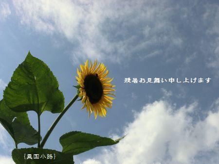 zansho.JPG